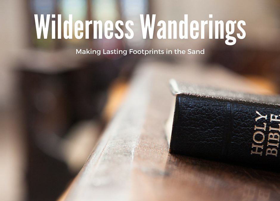 Wilderness Wanderings: The Unfolding of a Plan
