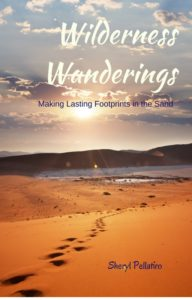 Wilderness Wanderings: Making Lasting Footprints in the Sand
