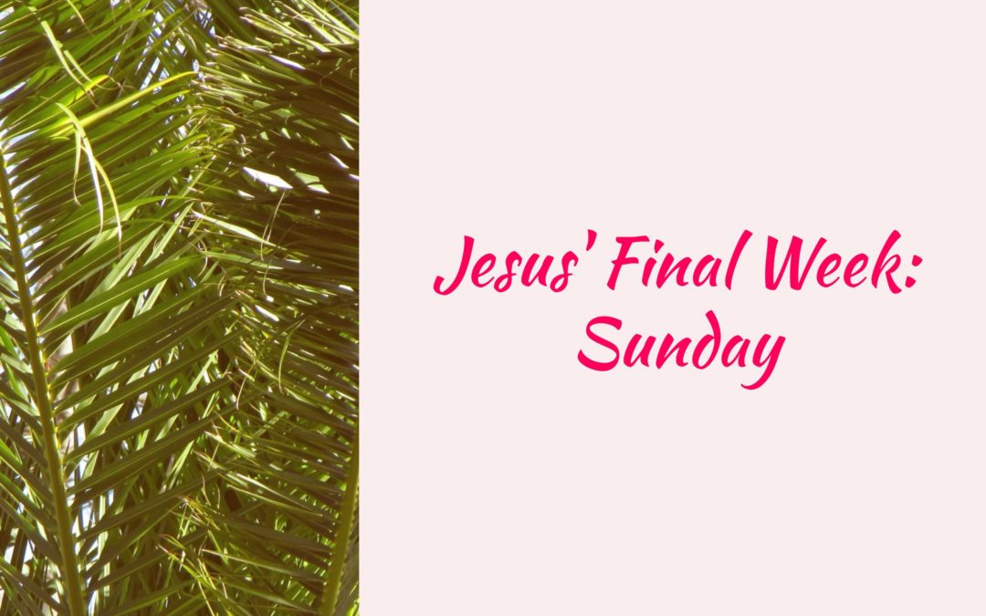 Jesus' Final Week: Sunday