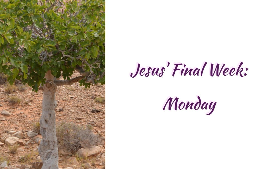 Jesus' Final Week: Monday