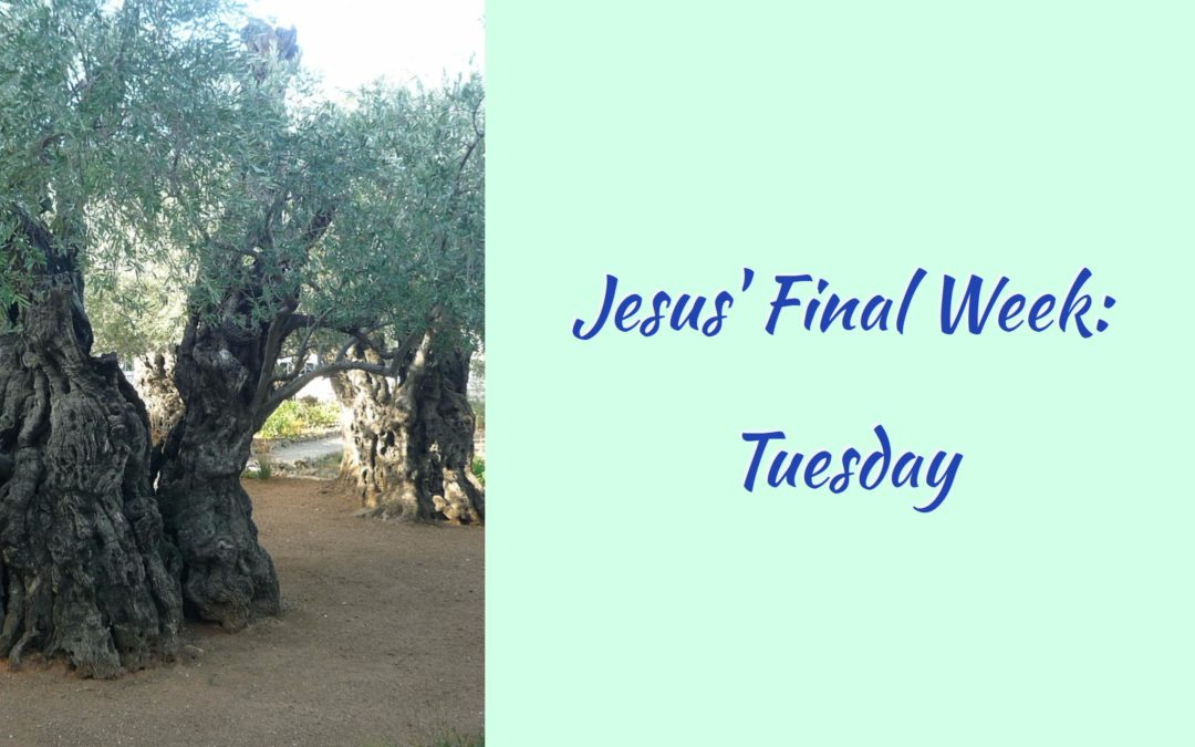 Jesus' Final Week: Tuesday