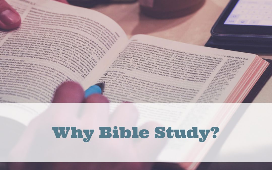 Why Bible Study?